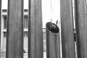 Yuval avital fence